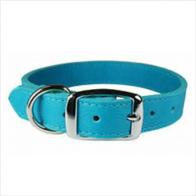 LUXE Leather Dog Collars – Turquoise Blue