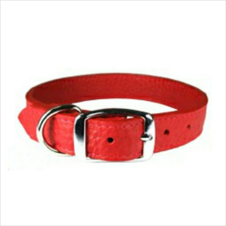 LUXE Leather Dog Collars – Ruby Red
