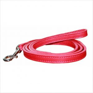LUXE Leather Dog Leads – Ruby Red