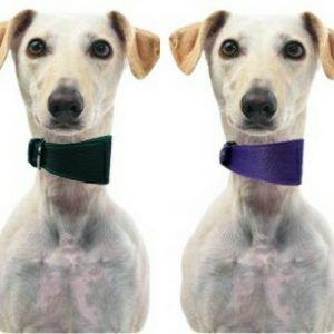 LUXE Leather Tapered Hound Collars – Pink