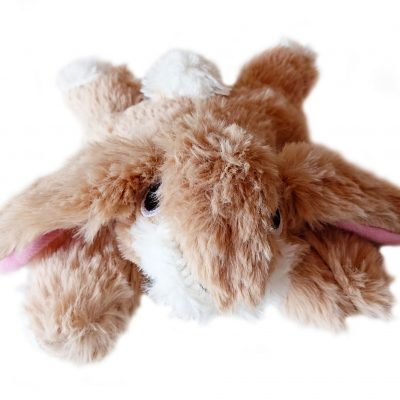 Soft Bunny Dog Toy