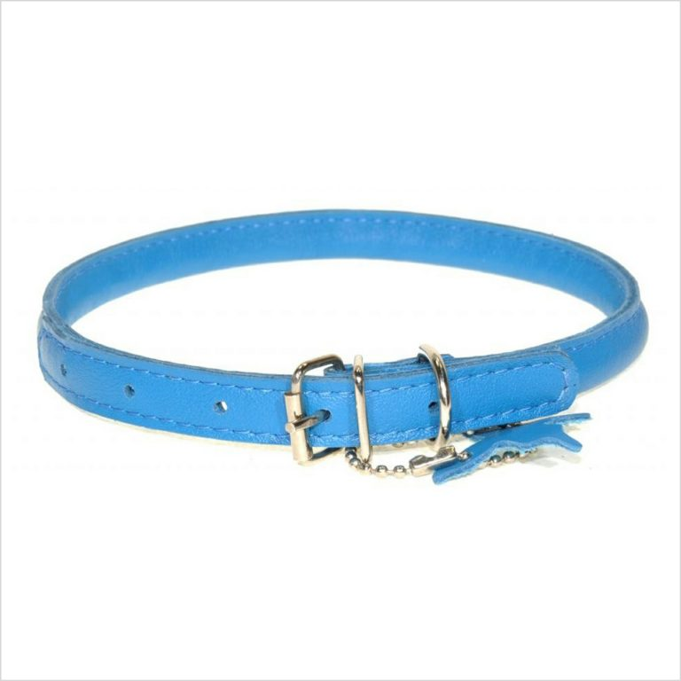 Rolled Leather Collars – Turquoise Blue