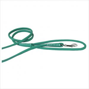 Rolled Leather Lead – Mint Green