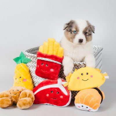 Nomnomz Dog Toys