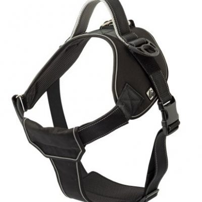 Extreme Harness for Dogs