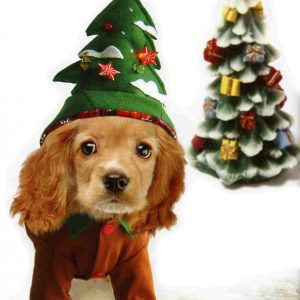 Christmas Tree Dog Costume