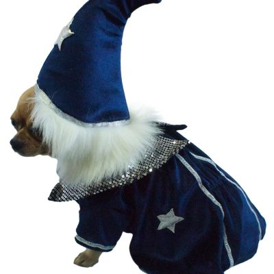 Wizard Dog Costume