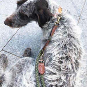 Nylon Rope Police Training Dog Lead