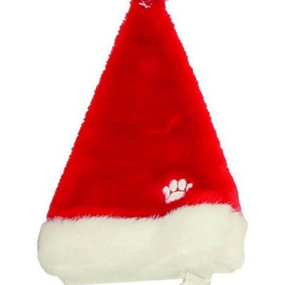 Christmas Santa Dog Hats