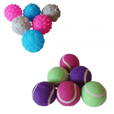 Dog Mini Tennis & Squeaky Balls – Twin Pack