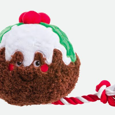 Christmas Party Christmas Pudding Toy